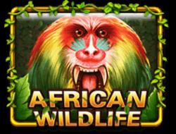 african wildlife 918kiss