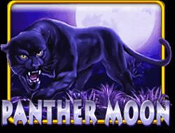 panther moon 918kiss